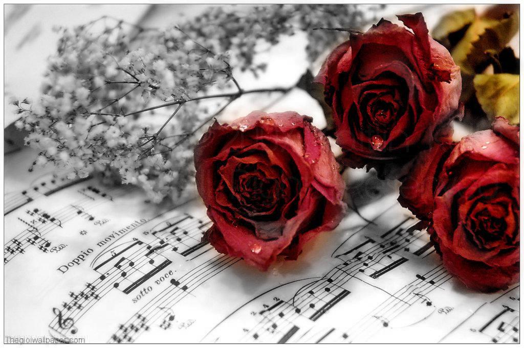http://webchinupload.com/files/love-wallpaper-1_1.png